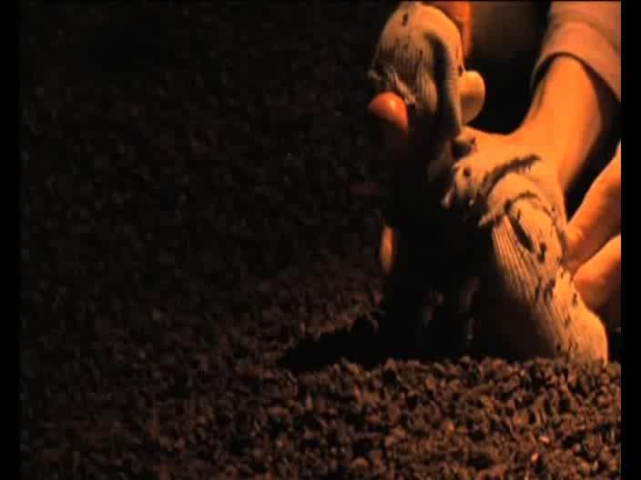Vidéo Piccoli Sentimenti