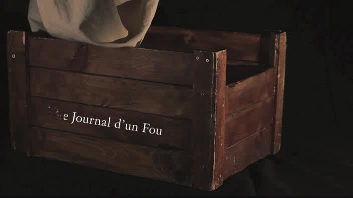 """Vidéo """"Le journal d'un fou"""", m.e.s. Bruno Dairou - Extraits, entretiens, ..."""