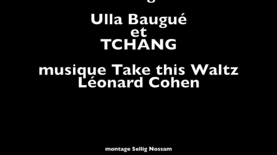 """Vidéo """"Gibiers  Du Temps - deuxième époque : voix"""" de D. G. Gabily - Extrait/montage"""
