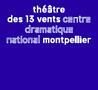 Photo de Théâtre des 13 vents