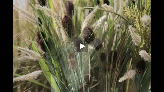 """Vidéo """"Mongol"""" de K. Serres , m.e.s. de P. Daniel-Lacombe, bande-annonce"""