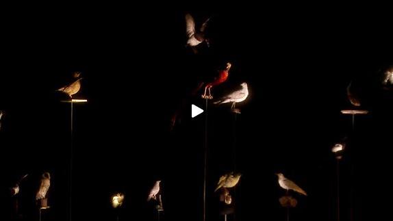 """Vidéo """"La Mélopée du petit barbare"""" de Julien Mages - Extrait"""