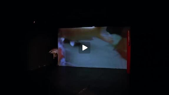 "Vidéo ""Princesse Monokini est née au Japon"" - Teaser"