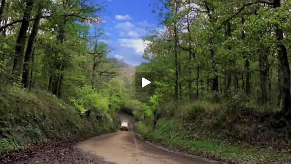 """Vidéo """"Tristesse animal noir"""", m.e.s. Guy Delamotte, teaser"""