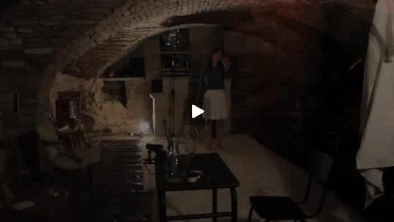 """Vidéo """"Mademoiselle Else"""", m.e.s. C. Marty, extraits et entretien avec A.-M. Mazan"""