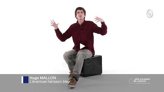"Vidéo ""Education sentimentale / Roman performance"" - Entretien avec Hugo Mallon"