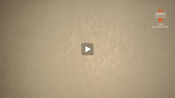 """Vidéo """"Himmelweg"""" de Juan Mayorga, m.e.s. J. Lavelli - Teaser"""