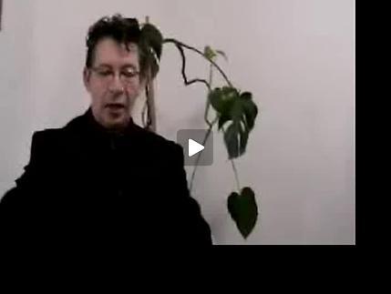 """Vidéo Festival Auteurs en Acte 2011 : """"Résonances latines"""""""