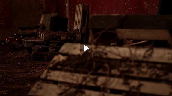 """Vidéo """"Quand je pense qu'on va vieillir ensemble"""" - Les Chiens de Navarre"""