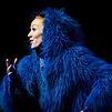 Accueil de « L'Orang-Outang bleue »