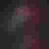Image de spectacle La Plume et le fusil