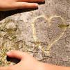 Accueil de « J'ai un arbre dans mon cœur »