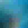 Image de spectacle L'Île saline