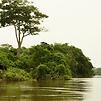 Accueil de « Congo »