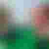 Image de spectacle Les Fantaisies au vert