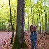 Accueil de « Une forêt en bois ...construire »