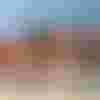 Image de spectacle L'Humanité plage