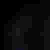 Image de spectacle Anguille sous roche