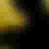 Image de spectacle Des Araignées dans la tête