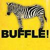 Image de spectacle Buffle