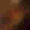 Image de spectacle L'Estomac dans la peau