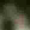 Image de spectacle L'Homme de plein vent