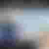Image de spectacle L'Origine du monde (46x55)