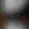 Image de spectacle Le Lac des cygnes