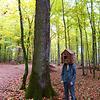 Image de spectacle Une forêt en bois ...construire