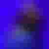 Image de spectacle La Vie de Galilée