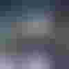 Image de spectacle Légendes de la forêt viennoise