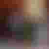 Image de spectacle La Puce à l'oreille