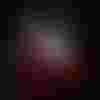 Image de spectacle L'Empreinte de la biche