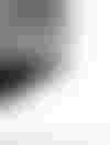 couverture du texte Face à quelques sphynx