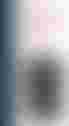 couverture du texte Nu masculin debout