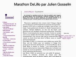 Marathon Delillo par Julien Gosselin