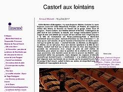 Castorf aux lointains