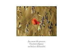 Illustration de Exposition Envers Endroit - photos et textes poétiques