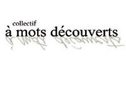 Illustration de A Mots Découverts invité de la soirée de la revue Le Bruit du Monde