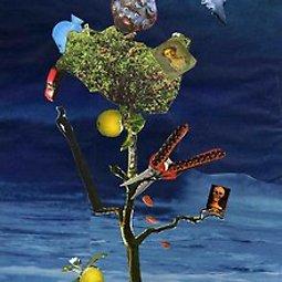 Illustration de Lecture de La Trilogie du pommier de Valérie Alane
